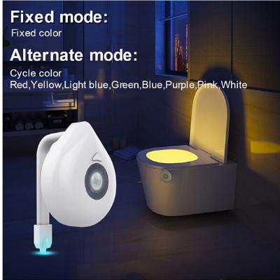 toiletverlichting