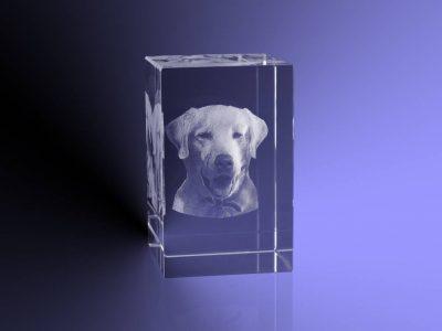 3d-foto-in-glas-rechthoek-blok-5x5x8-cm (3)